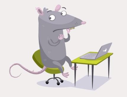 rat-comp